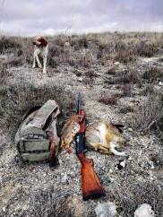 Percha en día de caza, dos perdices, una liebre y un conejo